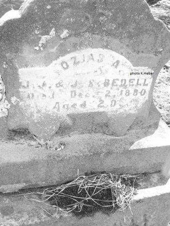 BEDELL, OZIAS A - Champaign County, Ohio | OZIAS A BEDELL - Ohio Gravestone Photos