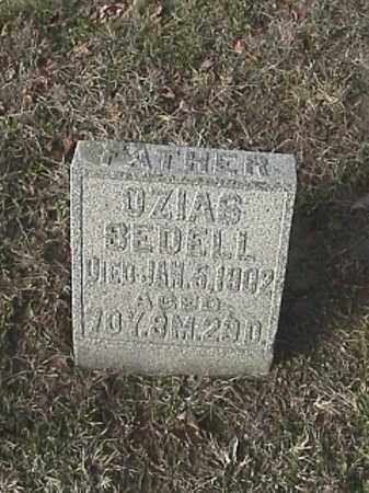 BEDELL, OZIAS - Champaign County, Ohio | OZIAS BEDELL - Ohio Gravestone Photos
