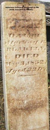 BLAKELY, JANE - Champaign County, Ohio   JANE BLAKELY - Ohio Gravestone Photos