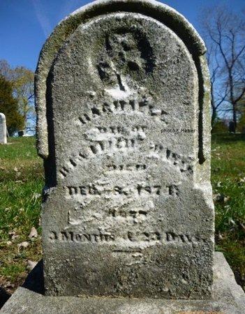 BLUE, RACHEL L - Champaign County, Ohio | RACHEL L BLUE - Ohio Gravestone Photos