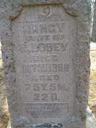 BODEY, NANCY - Champaign County, Ohio | NANCY BODEY - Ohio Gravestone Photos