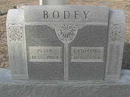 SNYDER BODEY, CATHARINE - Champaign County, Ohio | CATHARINE SNYDER BODEY - Ohio Gravestone Photos
