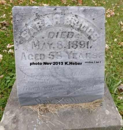 POND BRIGGS, SARAH - Champaign County, Ohio | SARAH POND BRIGGS - Ohio Gravestone Photos