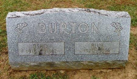 BURTON, OSHEL - Champaign County, Ohio | OSHEL BURTON - Ohio Gravestone Photos
