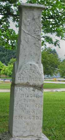 BUSH, GEORGIE - Champaign County, Ohio | GEORGIE BUSH - Ohio Gravestone Photos