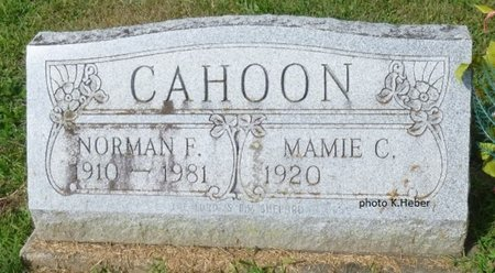 CAHOON, NORMAN FREDERICK - Champaign County, Ohio | NORMAN FREDERICK CAHOON - Ohio Gravestone Photos
