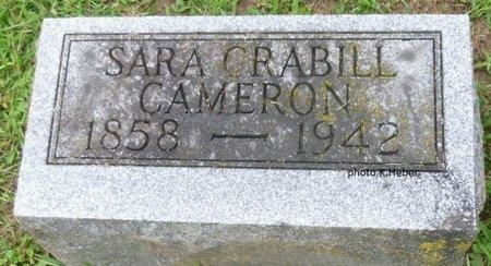 CRABILL CAMERON, SARA - Champaign County, Ohio | SARA CRABILL CAMERON - Ohio Gravestone Photos