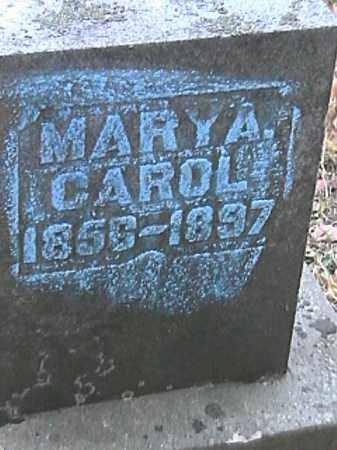 CAROL, MARY A. - Champaign County, Ohio | MARY A. CAROL - Ohio Gravestone Photos
