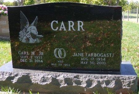 CARR, JR, CARL MARCUS - Champaign County, Ohio | CARL MARCUS CARR, JR - Ohio Gravestone Photos