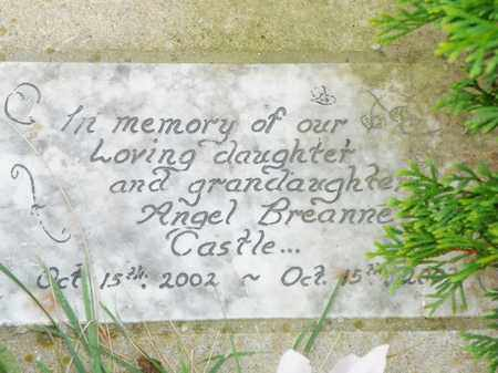 CASTLE, ANGEL BREANNE - Champaign County, Ohio | ANGEL BREANNE CASTLE - Ohio Gravestone Photos