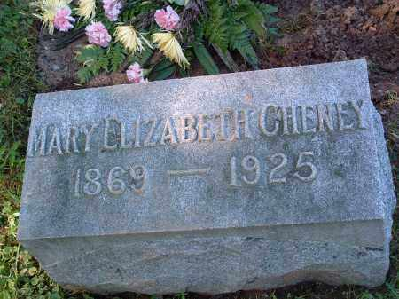 "MICKLE CHENEY, MARY ELIZABETH ""LIZZY"" - Champaign County, Ohio 