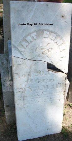 COMER, BRIANT/BRYANT - Champaign County, Ohio   BRIANT/BRYANT COMER - Ohio Gravestone Photos