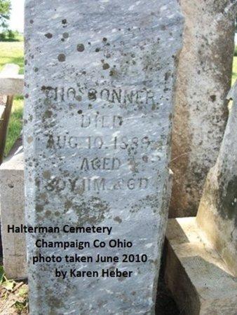 CONNER, THOMAS - Champaign County, Ohio | THOMAS CONNER - Ohio Gravestone Photos