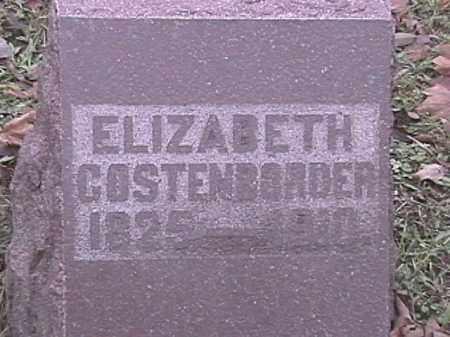 COSTENBORDER, ELIZABETH - Champaign County, Ohio | ELIZABETH COSTENBORDER - Ohio Gravestone Photos