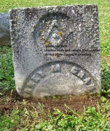 CRABILL, ELCANEY MASON - Champaign County, Ohio | ELCANEY MASON CRABILL - Ohio Gravestone Photos