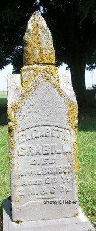 SMITH CRABILL, ELIZABETH - Champaign County, Ohio | ELIZABETH SMITH CRABILL - Ohio Gravestone Photos