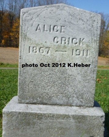 ANDREWS CRICK, ALICE MAY - Champaign County, Ohio | ALICE MAY ANDREWS CRICK - Ohio Gravestone Photos