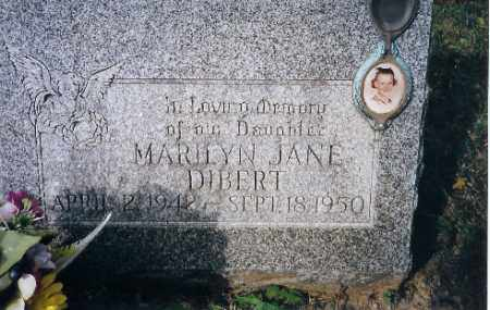 DEBERT, MARILYN J - Champaign County, Ohio | MARILYN J DEBERT - Ohio Gravestone Photos