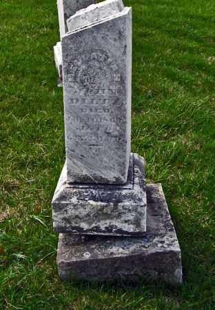 WHITRIDGE DILTZ, MELLATIAH - Champaign County, Ohio | MELLATIAH WHITRIDGE DILTZ - Ohio Gravestone Photos