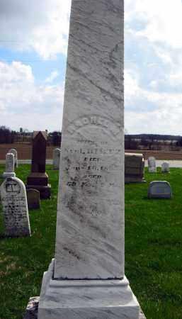DILTZ, RACHEL - Champaign County, Ohio | RACHEL DILTZ - Ohio Gravestone Photos