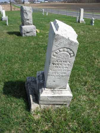 STEVENSON DILTZ, SUSANNA - Champaign County, Ohio | SUSANNA STEVENSON DILTZ - Ohio Gravestone Photos
