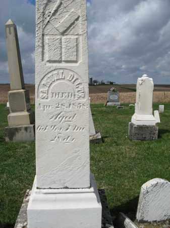 DILTZ, SAMUEL - Champaign County, Ohio | SAMUEL DILTZ - Ohio Gravestone Photos
