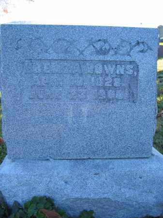 DOWNS, EBELIZA - Champaign County, Ohio | EBELIZA DOWNS - Ohio Gravestone Photos