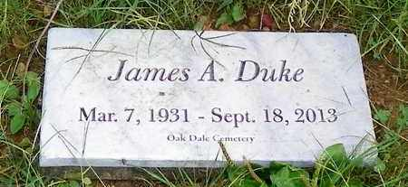 DUKE, JAMES R. - Champaign County, Ohio | JAMES R. DUKE - Ohio Gravestone Photos