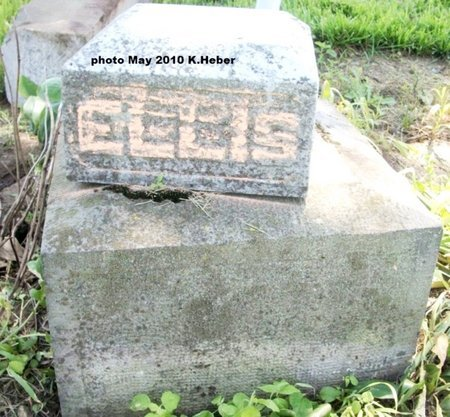 ELLIS, UNKNOWN - Champaign County, Ohio | UNKNOWN ELLIS - Ohio Gravestone Photos