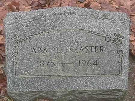 FEASTER, ARA E. - Champaign County, Ohio | ARA E. FEASTER - Ohio Gravestone Photos