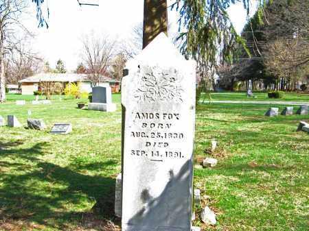 FOX, AMOS - Champaign County, Ohio | AMOS FOX - Ohio Gravestone Photos