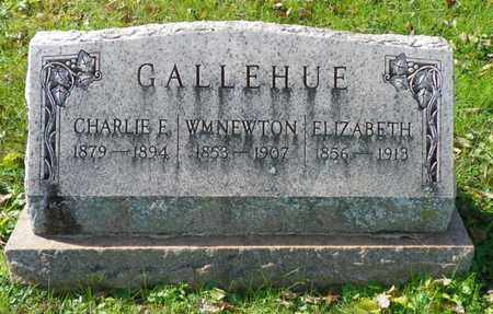 GALLEHUE, WM NEWTON - Champaign County, Ohio | WM NEWTON GALLEHUE - Ohio Gravestone Photos