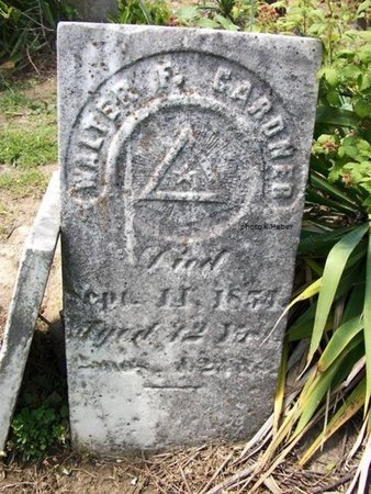 GARDNER, WALTER F - Champaign County, Ohio | WALTER F GARDNER - Ohio Gravestone Photos