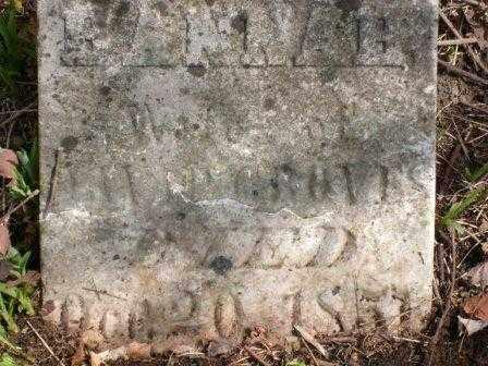 GROVES, HANNAH - Champaign County, Ohio | HANNAH GROVES - Ohio Gravestone Photos