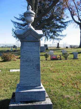 HALE, HANNAH - Champaign County, Ohio | HANNAH HALE - Ohio Gravestone Photos