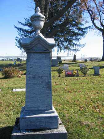 HALE, HENRY - Champaign County, Ohio | HENRY HALE - Ohio Gravestone Photos