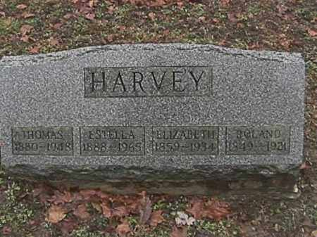 HARVEY, ELIZABETH - Champaign County, Ohio | ELIZABETH HARVEY - Ohio Gravestone Photos