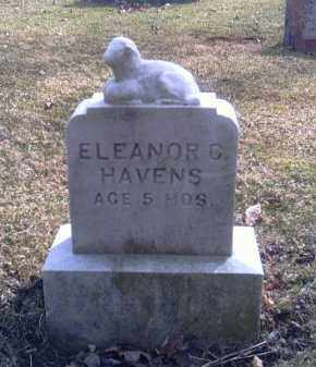 HAVENS, ELEANOR C. - Champaign County, Ohio | ELEANOR C. HAVENS - Ohio Gravestone Photos