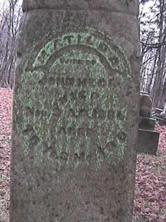 PRETZMAN HECK, MATILDA - Champaign County, Ohio | MATILDA PRETZMAN HECK - Ohio Gravestone Photos