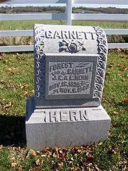 HERN, FOREST GARNETT - Champaign County, Ohio | FOREST GARNETT HERN - Ohio Gravestone Photos