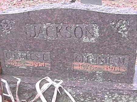 JACKSON, GLENNA M. - Champaign County, Ohio | GLENNA M. JACKSON - Ohio Gravestone Photos