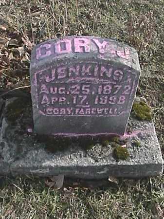 JENKINS, CORY J - Champaign County, Ohio | CORY J JENKINS - Ohio Gravestone Photos