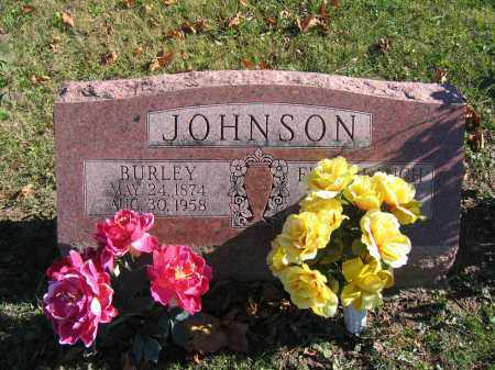 JOHNSON, BURLEY - Champaign County, Ohio | BURLEY JOHNSON - Ohio Gravestone Photos