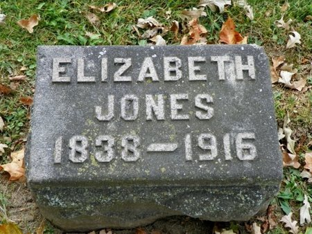 JONES, EIZABETH - Champaign County, Ohio   EIZABETH JONES - Ohio Gravestone Photos