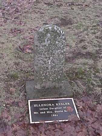 KESLER, ELLENORA - Champaign County, Ohio | ELLENORA KESLER - Ohio Gravestone Photos