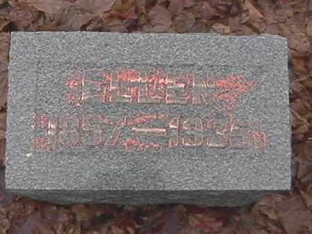 LEONARD, ELIZA ELLEN - Champaign County, Ohio | ELIZA ELLEN LEONARD - Ohio Gravestone Photos