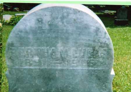 LUCAS, BERTHA MAE LUCAS - Champaign County, Ohio | BERTHA MAE LUCAS LUCAS - Ohio Gravestone Photos