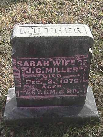 IDLE MILLER, SARAH ANN - Champaign County, Ohio | SARAH ANN IDLE MILLER - Ohio Gravestone Photos