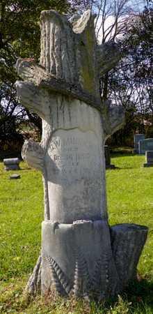 MINNICH, G. W. - Champaign County, Ohio   G. W. MINNICH - Ohio Gravestone Photos