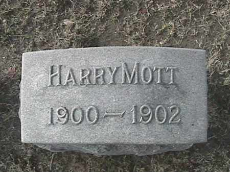 MOTT, HARRY - Champaign County, Ohio | HARRY MOTT - Ohio Gravestone Photos